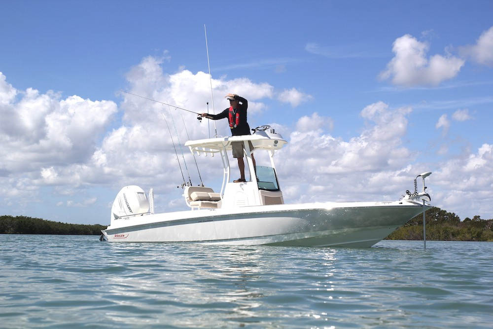 Boston-whaler-240-dauntless-pro